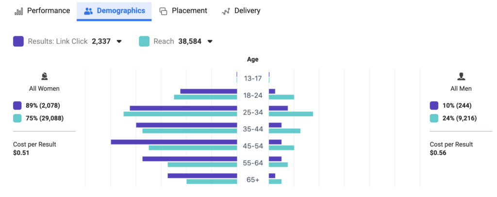Demographics Example Social Media Marketing